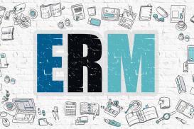 6x Enterprise Risk Management(ERM) Level 1