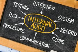 6x Internal Audits Level 1