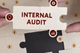 6x Internal Audits Level 2